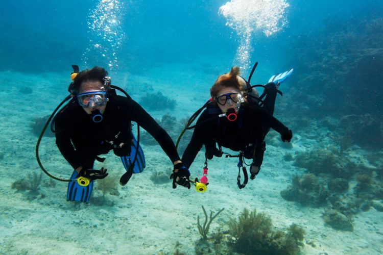 The coastline off the Algarve is perfect for diving of any experience